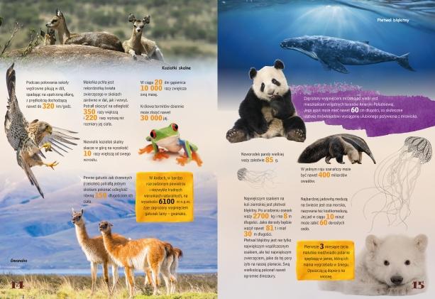 Najciekawsze fakty. Rekordy zwierząt